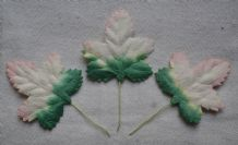 WHITISH PINKISH ACER LEAVES (40mm) Mulberry Paper leaves